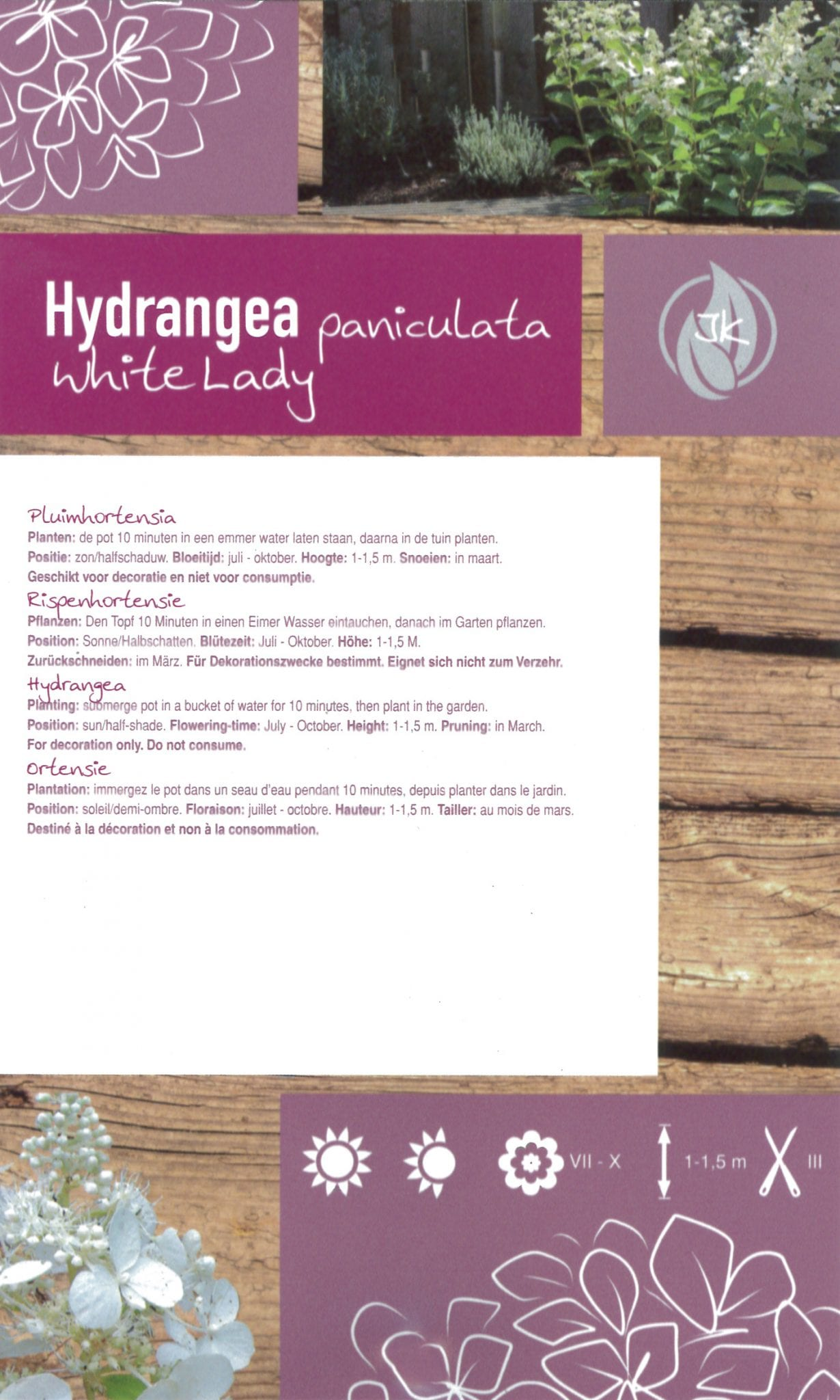 De Hydrangea paniculata 'White Lady' etiket achterzijde | Plants By Nature - gespecialiseerd in hydrangea