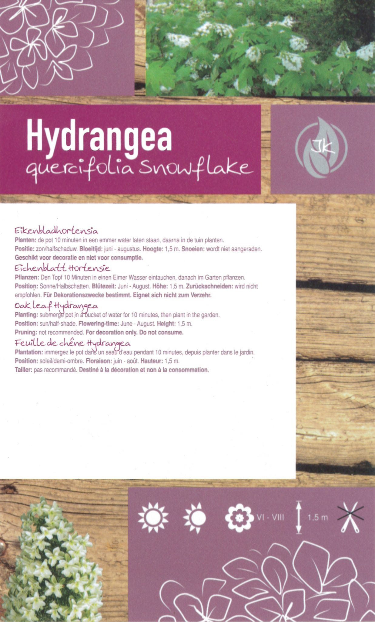 De Hydrangea Quercifolia 'Snowflake' etiket achterzijde | Plants By Nature - gespecialiseerd in hydrangea