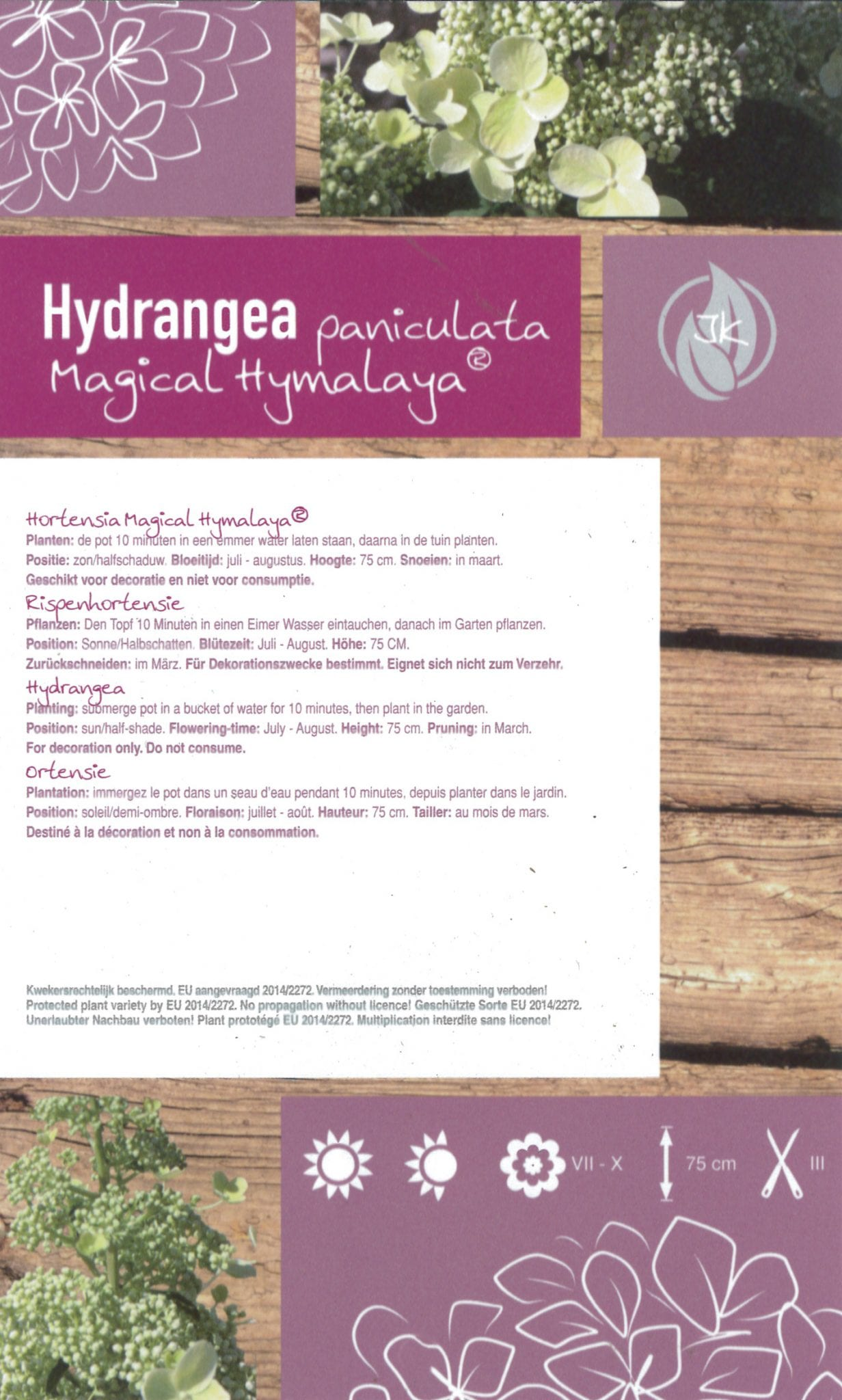 "Hydrangea Paniculata ""Magical Hymalaya"" etiket achterzijde | Plants By Nature - gespecialiseerd in hydrangea"